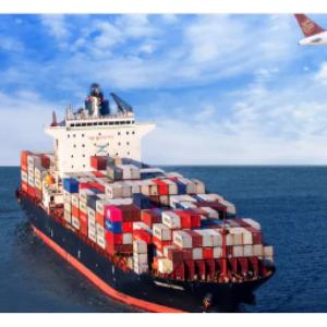 增长3162%!这家企业半年净赚370亿元!中远海控集装箱航运业务增长迅猛